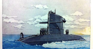 Geen zaagkever of onderzeeër als deze