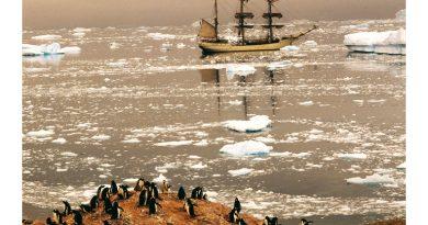 De bark Europa voor anker bij Antartica