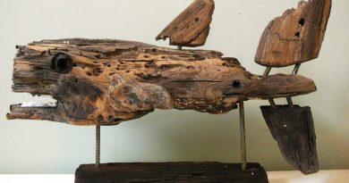 Zeeduivel, Drijfhout sculptuur van Marcel Dijker