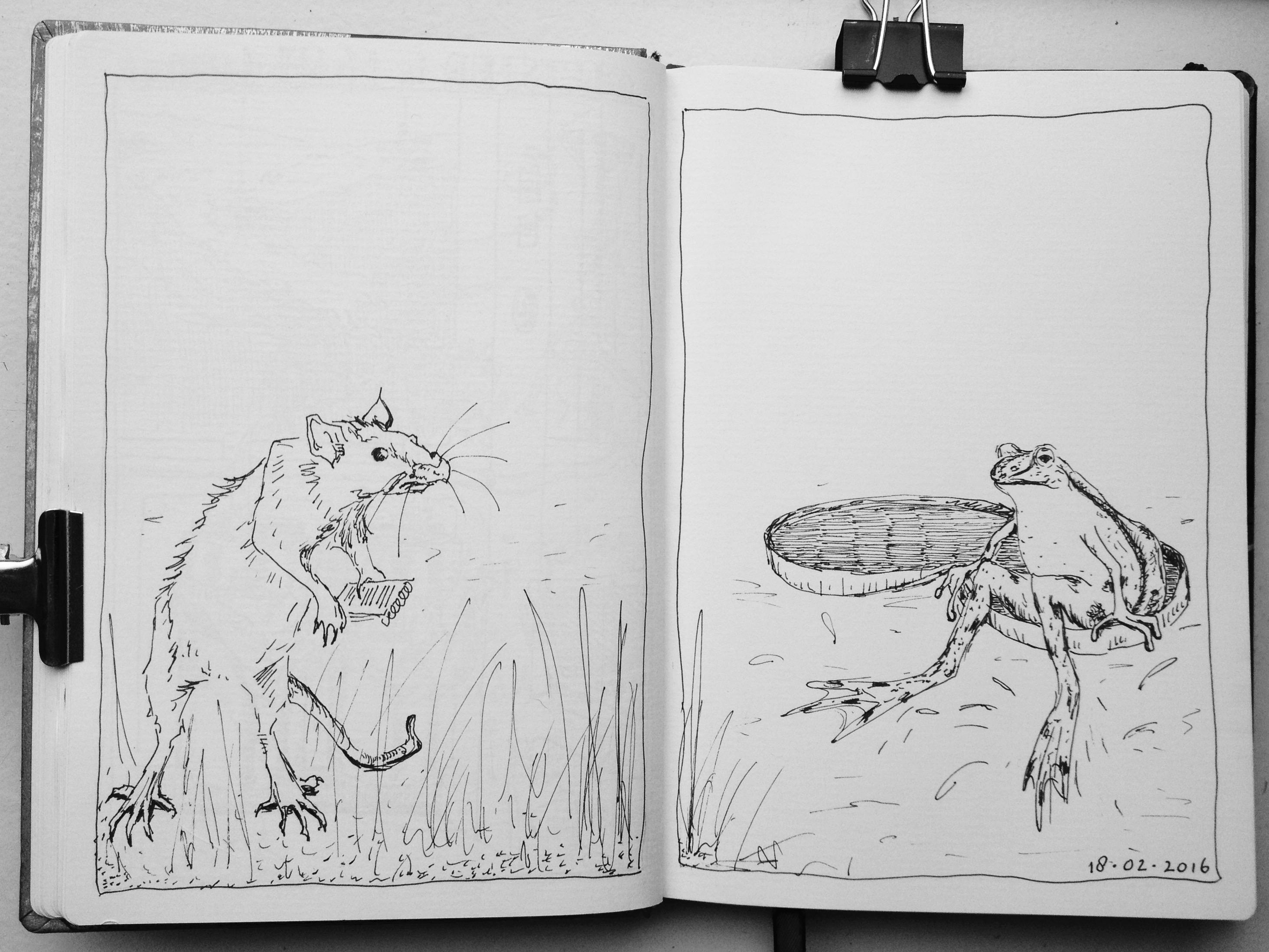 Kikker en rat